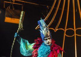 Mężczyzna przebrany za kolorowego ptaka klęczy na złotej huśtawce, w prawej ręce trzyma złoty patyk, za plecami ma fragment wielkiej złotej klatki, na górze wisi lustrzana kula dyskotekowa.